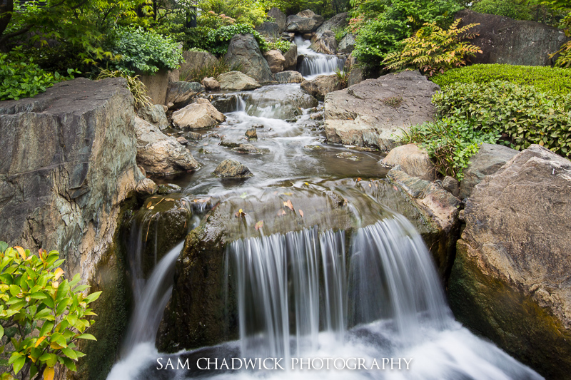Japanese Stream